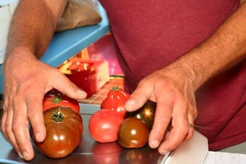 Fruits, légumes secs aux Primeurs Cyclades de Gassin - https://gassin.eu