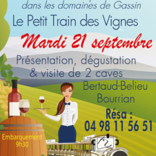Petit train des Vignes de Gassin - https://gassin.eu/fr/animation/distractions-et-loisirs/gassin/petit-train-des-vignes-visite-et-degustation-dans-les-domaines-de-gassin-5442592/
